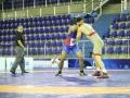 pan-americano-senior-wrestling-2017-greco-credito-mayara-ananias_cbw_001_040